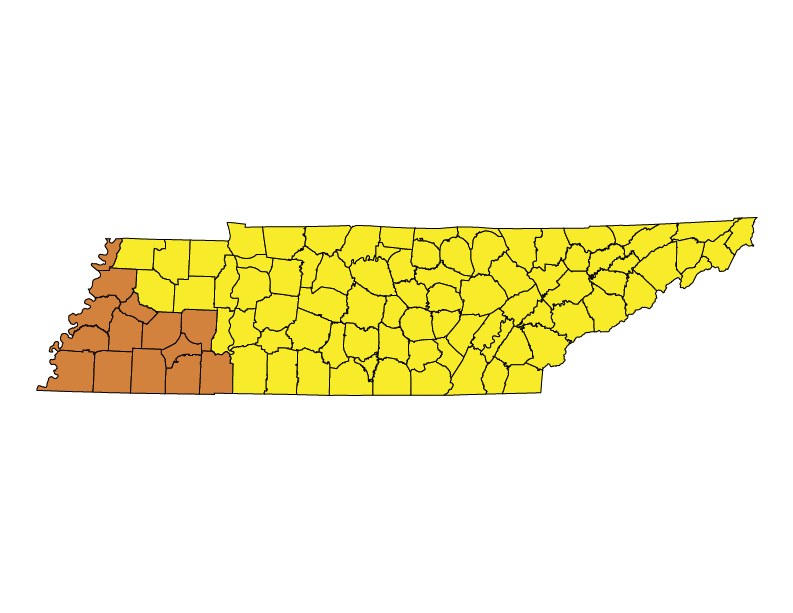 State Code Status: Tennessee | The Building Codes Assistance Project